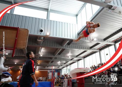 Autonómico. IX Trofeo Comunidad de Madrid. Gimnasia Artística Masculina
